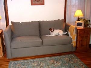 Chewed Sofa